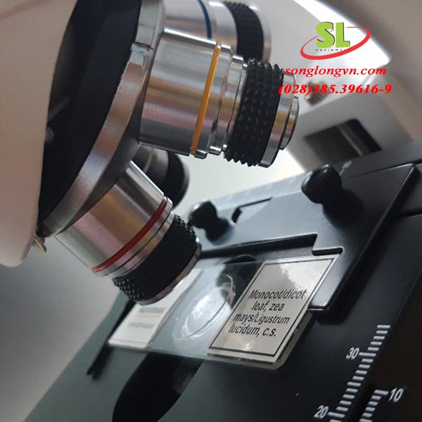 Kính hiển vi sinh học 2 mắt mb 1152 Euromex